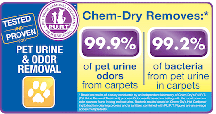 Chem-Dry's Pet Urine Removal Treatment Removes 99.9% of Pet Urine Odor & 99.2% of Pet Urine Bacteria