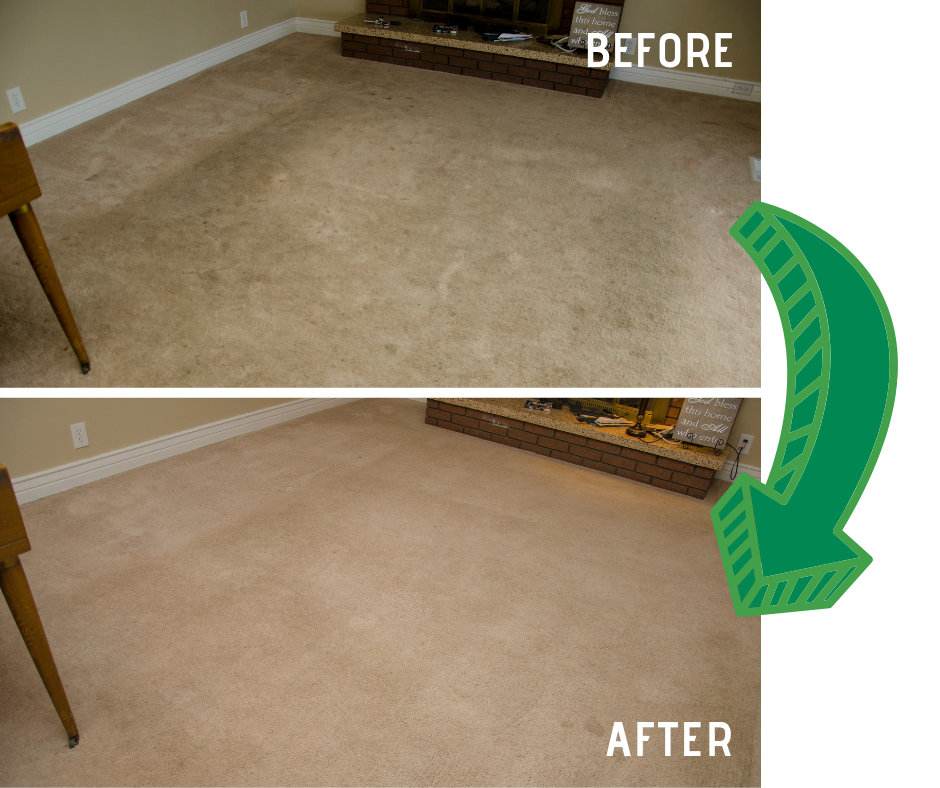 before and after carpet cleaning results in Lodi CA with Mark Rays III