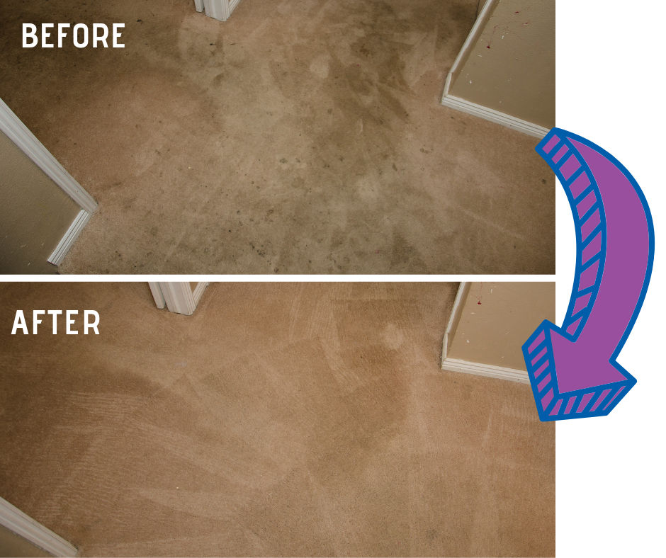 before and after carpet cleaning results in Lodi CA